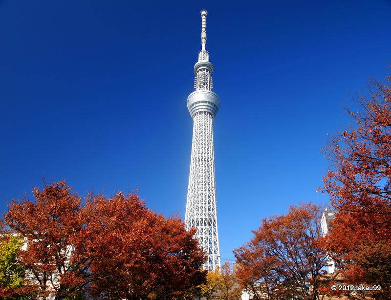Kết quả hình ảnh cho tháp truyền hình Tokyo Skytree  MÙA LÁ ĐỎ